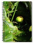 Spatterdock - Wild Yellow Water Lily Spiral Notebook
