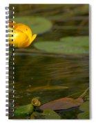 Spatterdock Spiral Notebook