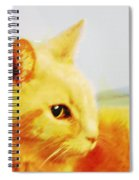 Special And Purfect Spiral Notebook