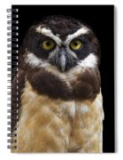 Spectacled Owl Spiral Notebook