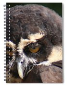 Spectacled Owl Portrait 2 Spiral Notebook