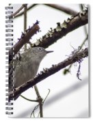 Spectacled Visitor Spiral Notebook
