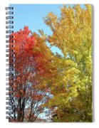 Spectacular Autumn Colors Spiral Notebook