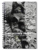 Sphinx Quote Spiral Notebook