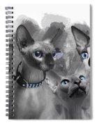 Sphynx Group No 02 Spiral Notebook