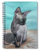 Sphynx Spiral Notebook