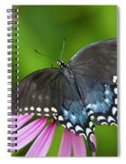 Spice Of Life Butterfly Spiral Notebook