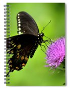 Spicebush Swallowtail Butterfly Spiral Notebook