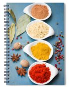 Spices On Blue   Spiral Notebook