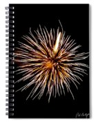 Spider Ball Spiral Notebook