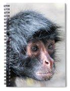Spider Monkey Face Closeup Spiral Notebook