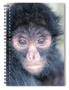 Spider Monkey Face Spiral Notebook