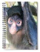 Spider Monkey Vertical View Spiral Notebook
