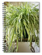 Spider Plant Spiral Notebook