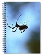 Spider Silhouette Spiral Notebook