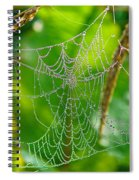 Spider Web Artwork Spiral Notebook