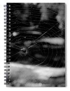 Spider Web Black White Spiral Notebook