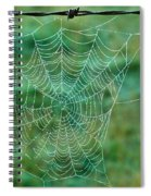 Spider Web In The Springtime Spiral Notebook