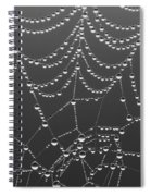 Spider Web Patterns Spiral Notebook