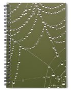 Spider Web With Water Droplets  Spiral Notebook