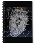 Spider's Web Spiral Notebook