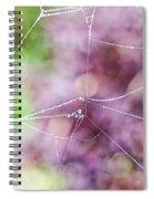 Spiderweb In The Mist Spiral Notebook