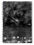 Spiderweb Spiral Notebook