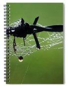 Spiderweb On Fencing Spiral Notebook