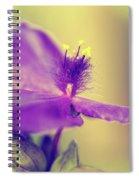 Spiderwort Spiral Notebook