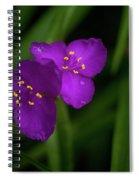 Spiderwort Couple Spiral Notebook