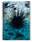 Spike Spiral Notebook