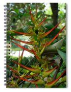 Spike Plants Spiral Notebook