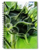Spike Spiral Notebook