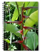 Spike Tree Spiral Notebook