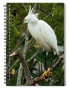 Spiked Spiral Notebook
