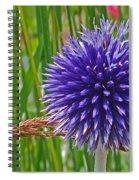 Spiky Blue Spiral Notebook