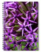 Spiky Spiral Notebook