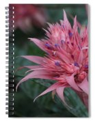 Spiky Pink Spiral Notebook