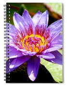 Spiky Sunshine Spiral Notebook