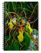 Spindly Orchid Spiral Notebook