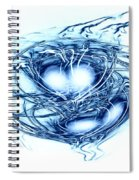 Spinning Into Place Spiral Notebook