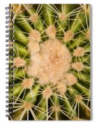 Spiny Cactus Needles Spiral Notebook