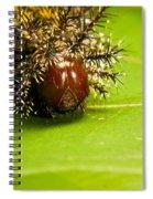 Spiny Larvae Spiral Notebook