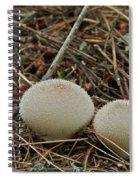 Spiny Puff Balls Spiral Notebook