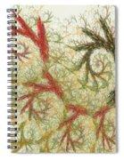 Spiral Embroidery Spiral Notebook
