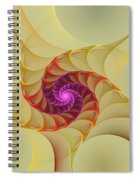 Spiral Rainbow Of Color Spiral Notebook