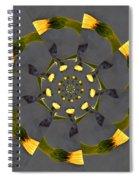 Spiraling Gerberas Spiral Notebook