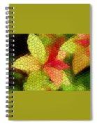 Spirea Spiral Notebook
