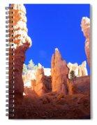 Spires Spiral Notebook