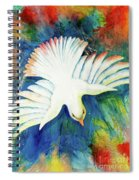 Spirit Fire Spiral Notebook